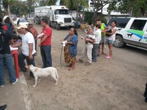 Vacunación de perros Cd Madero  2001