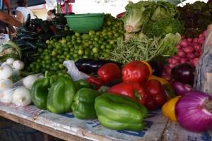 Frutas y verduras rodantes Tampico