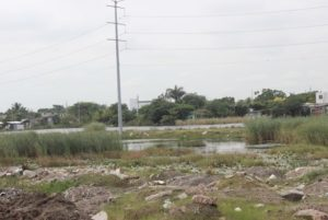 laguna-relleno-ciudad-madero-colonia-miramapolis
